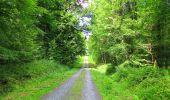 Trail Walk LONGPONT - en forêt de Retz_56_Longpont_tour du Général Mangin_AR - Photo 39