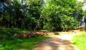 Trail Walk LONGPONT - en forêt de Retz_56_Longpont_tour du Général Mangin_AR - Photo 101