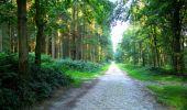 Trail Walk LONGPONT - en forêt de Retz_56_Longpont_tour du Général Mangin_AR - Photo 174