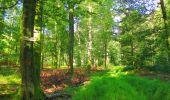 Trail Walk LONGPONT - en forêt de Retz_56_Longpont_tour du Général Mangin_AR - Photo 146