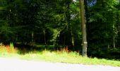 Trail Walk LONGPONT - en forêt de Retz_56_Longpont_tour du Général Mangin_AR - Photo 105