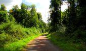 Trail Walk LONGPONT - en forêt de Retz_56_Longpont_tour du Général Mangin_AR - Photo 77