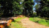 Trail Walk LONGPONT - en forêt de Retz_56_Longpont_tour du Général Mangin_AR - Photo 102
