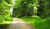 Trail Walk LONGPONT - en forêt de Retz_56_Longpont_tour du Général Mangin_AR - Photo 29