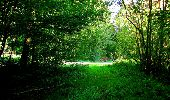 Trail Walk LONGPONT - en forêt de Retz_56_Longpont_tour du Général Mangin_AR - Photo 159