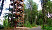 Trail Walk LONGPONT - en forêt de Retz_56_Longpont_tour du Général Mangin_AR - Photo 78