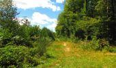 Trail Walk LONGPONT - en forêt de Retz_56_Longpont_tour du Général Mangin_AR - Photo 11