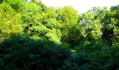 Trail Walk LONGPONT - en forêt de Retz_56_Longpont_tour du Général Mangin_AR - Photo 150