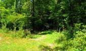 Trail Walk LONGPONT - en forêt de Retz_56_Longpont_tour du Général Mangin_AR - Photo 12