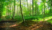 Trail Walk LONGPONT - en forêt de Retz_56_Longpont_tour du Général Mangin_AR - Photo 121