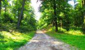 Trail Walk LONGPONT - en forêt de Retz_56_Longpont_tour du Général Mangin_AR - Photo 113