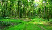 Trail Walk LONGPONT - en forêt de Retz_56_Longpont_tour du Général Mangin_AR - Photo 130
