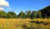 Trail Walk LONGPONT - en forêt de Retz_56_Longpont_tour du Général Mangin_AR - Photo 124