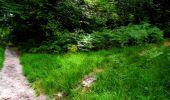 Trail Walk LONGPONT - en forêt de Retz_56_Longpont_tour du Général Mangin_AR - Photo 22