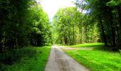 Trail Walk LONGPONT - en forêt de Retz_56_Longpont_tour du Général Mangin_AR - Photo 46