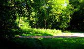 Trail Walk LONGPONT - en forêt de Retz_56_Longpont_tour du Général Mangin_AR - Photo 160