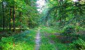 Trail Walk LONGPONT - en forêt de Retz_56_Longpont_tour du Général Mangin_AR - Photo 177