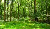 Trail Walk LONGPONT - en forêt de Retz_56_Longpont_tour du Général Mangin_AR - Photo 41