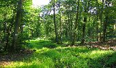 Trail Walk LONGPONT - en forêt de Retz_56_Longpont_tour du Général Mangin_AR - Photo 148