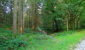 Trail Walk LONGPONT - en forêt de Retz_56_Longpont_tour du Général Mangin_AR - Photo 179