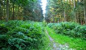 Trail Walk LONGPONT - en forêt de Retz_56_Longpont_tour du Général Mangin_AR - Photo 175