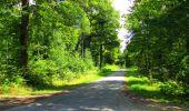 Trail Walk LONGPONT - en forêt de Retz_56_Longpont_tour du Général Mangin_AR - Photo 53