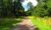 Trail Walk LONGPONT - en forêt de Retz_56_Longpont_tour du Général Mangin_AR - Photo 72