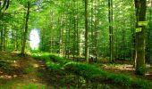 Trail Walk LONGPONT - en forêt de Retz_56_Longpont_tour du Général Mangin_AR - Photo 118