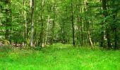 Trail Walk LONGPONT - en forêt de Retz_56_Longpont_tour du Général Mangin_AR - Photo 44