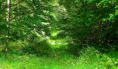 Trail Walk LONGPONT - en forêt de Retz_56_Longpont_tour du Général Mangin_AR - Photo 61