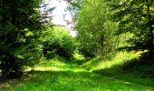 Trail Walk LONGPONT - en forêt de Retz_56_Longpont_tour du Général Mangin_AR - Photo 59