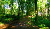 Trail Walk LONGPONT - en forêt de Retz_56_Longpont_tour du Général Mangin_AR - Photo 128
