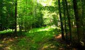 Trail Walk LONGPONT - en forêt de Retz_56_Longpont_tour du Général Mangin_AR - Photo 49