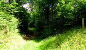 Trail Walk LONGPONT - en forêt de Retz_56_Longpont_tour du Général Mangin_AR - Photo 74