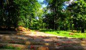 Trail Walk LONGPONT - en forêt de Retz_56_Longpont_tour du Général Mangin_AR - Photo 103