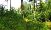 Trail Walk LONGPONT - en forêt de Retz_56_Longpont_tour du Général Mangin_AR - Photo 98
