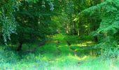 Trail Walk LONGPONT - en forêt de Retz_56_Longpont_tour du Général Mangin_AR - Photo 137