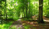 Trail Walk LONGPONT - en forêt de Retz_56_Longpont_tour du Général Mangin_AR - Photo 18