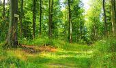 Trail Walk LONGPONT - en forêt de Retz_56_Longpont_tour du Général Mangin_AR - Photo 97