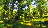 Trail Walk LONGPONT - en forêt de Retz_56_Longpont_tour du Général Mangin_AR - Photo 1
