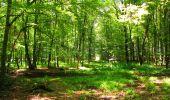 Trail Walk LONGPONT - en forêt de Retz_56_Longpont_tour du Général Mangin_AR - Photo 47