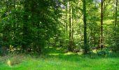 Trail Walk LONGPONT - en forêt de Retz_56_Longpont_tour du Général Mangin_AR - Photo 55