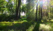 Trail Walk LONGPONT - en forêt de Retz_56_Longpont_tour du Général Mangin_AR - Photo 141