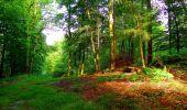 Trail Walk LONGPONT - en forêt de Retz_56_Longpont_tour du Général Mangin_AR - Photo 31
