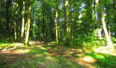 Trail Walk LONGPONT - en forêt de Retz_56_Longpont_tour du Général Mangin_AR - Photo 140