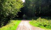 Trail Walk LONGPONT - en forêt de Retz_56_Longpont_tour du Général Mangin_AR - Photo 109