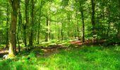 Trail Walk LONGPONT - en forêt de Retz_56_Longpont_tour du Général Mangin_AR - Photo 42