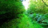 Trail Walk LONGPONT - en forêt de Retz_56_Longpont_tour du Général Mangin_AR - Photo 170