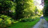 Trail Walk LONGPONT - en forêt de Retz_56_Longpont_tour du Général Mangin_AR - Photo 180