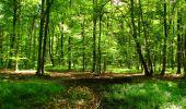 Trail Walk LONGPONT - en forêt de Retz_56_Longpont_tour du Général Mangin_AR - Photo 50